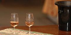 Oentourisme et Dégustation de vins à Béziers (® SAAM-fabrice CHORT)