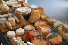 L'Ambassade Béziers est un restaurant gastronomique en centre-ville. Ici des fromages sélectionnés et affinés (® SAAM-fabrice Chort)