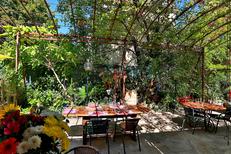 Restaurant Les Marronniers Lamalou-Les-Bains propose une cuisine fait maison ( SAAM-fabrice CHORT)