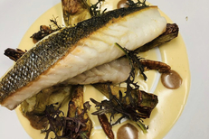 Restaurant de poissons Valras : Le Sepia (® le sepia)